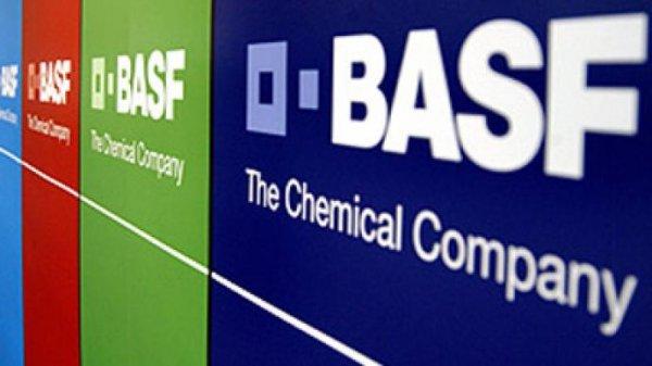 Бренд BASF