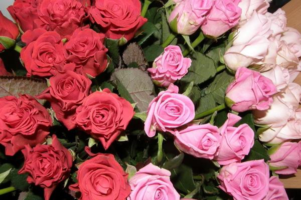 Как ухаживать за срезанными цветами?