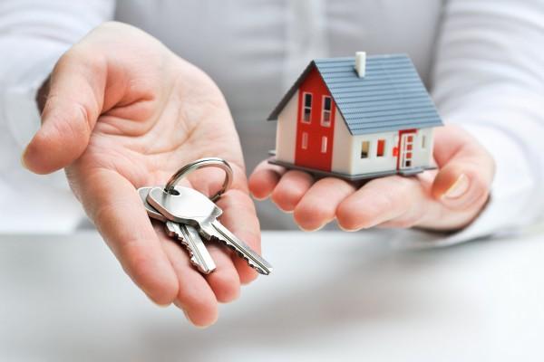 Кто занимается арендой недвижимости?