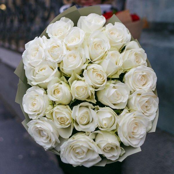Любимые цветы знаменитых женщин. Как цветы выбирают знаменитости?